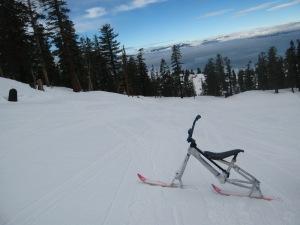 Elaine's Ski-bike