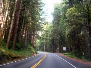 Redwood Hwy, US101 California