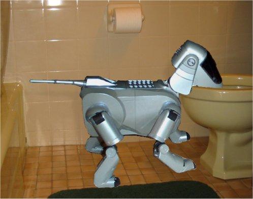 aibo-toilet
